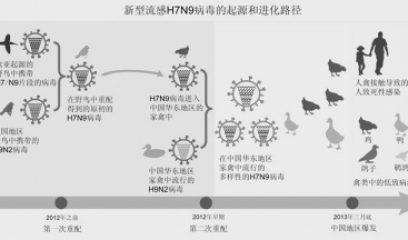 新型H7N9病毒起源和进化路径揭示