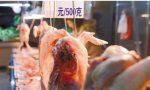 家禽屠宰配送拉高鸡价 谁来埋单?