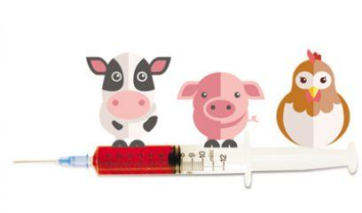中国兽药典委员会发布2017年版《兽药质量标准》勘误