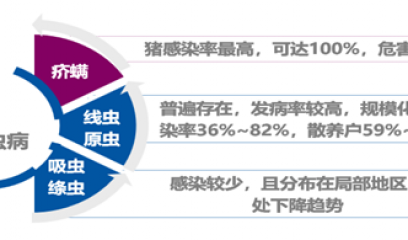 国内首个0.6%伊维菌素预混剂(伊力佳)上市