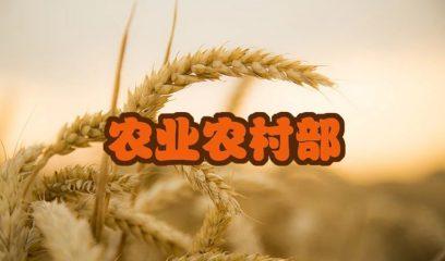 """农业农村部:答复全国人大代表关于""""进一步加强农业支持补贴政策绿色高质量发展导向""""的建议"""