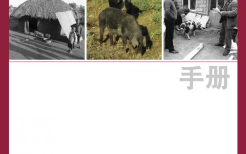【非洲猪瘟:发现与诊断】在疑似发病的情况下立即在养殖场采取的行动