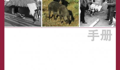 【非洲猪瘟:发现与诊断】在疑似发病的情况下立即在养殖场采取的行动(二)