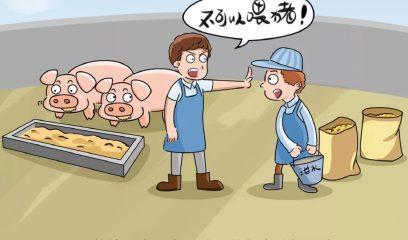 河南鹿邑县查处一起使用餐厨剩余物饲喂生猪案件,罚款3000元