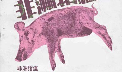 湖北省罗田县排查出非洲猪瘟疫情