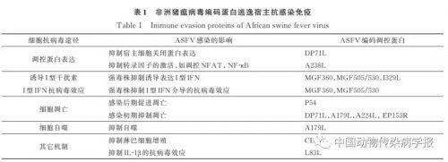 非洲猪瘟病毒免疫逃逸相关蛋白研究进展