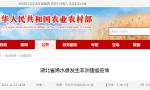 湖北省黄冈市浠水县发生非洲猪瘟疫情,存栏生猪636头
