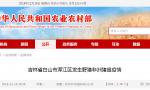 云南省昭通市威信县排查出非洲猪瘟疫情,养殖户存栏生猪1头