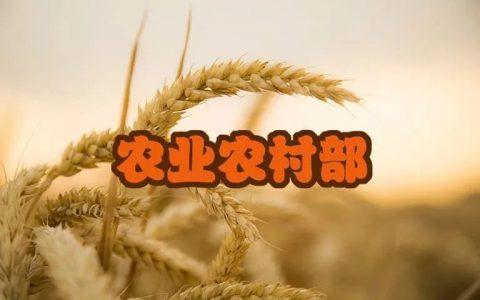 农业农村部关于规范生猪及生猪产品调运活动的通知