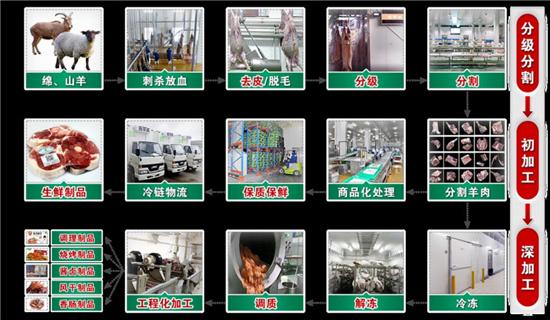 【国家奖】梯次加工 引领羊肉加工业跨越发展