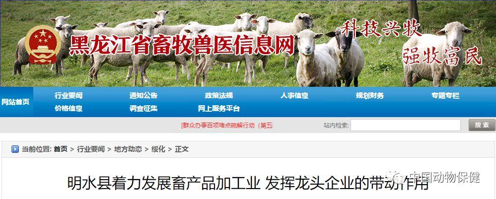 满血复活?明水县将重点发展亚欧牧业生猪屠宰项目,扩大生猪养殖量!