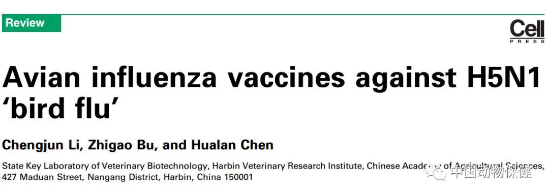研究进展|陈化兰院士团队综述H5N1禽流感疫苗及评价