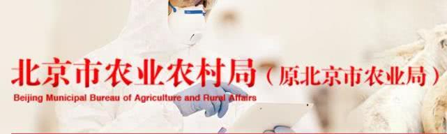 北京市出台《非洲猪瘟受委托检测实验室专项监管方案》