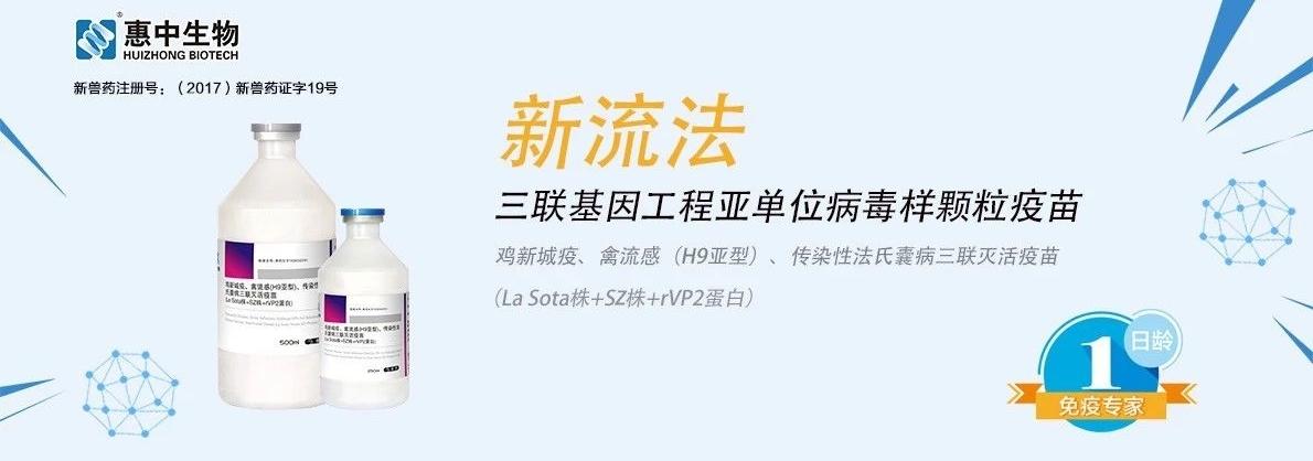 企业招聘|惠中生物禽苗事业部诚聘精英